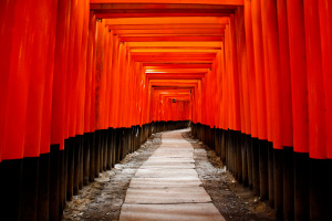 photodune-409201-japan-gate-torii-m