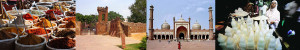 Delhi Walking Tour